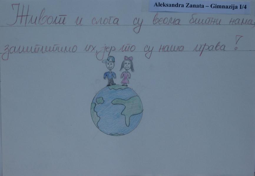 Aleksandra Zanata, Gimnazija Pirot