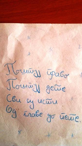 Monika Velojić, VIII razred, Svrljig (tekstulani deo)