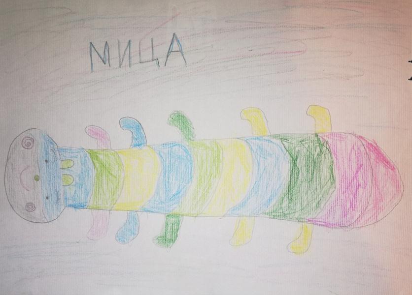Nepoznati autor, 7 godina, Niš